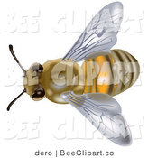Clip Art of an Overhead View of a European Honey Bee or Western Honey Bee (Apis Mellifera) by Dero
