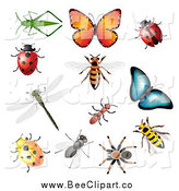Vector Clip Art of 3d Insects and Bugs by Vectorace