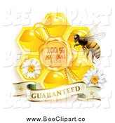Vector Clip Art of a Bee with a Natural Honeycomb and Guaranteed Banner by Merlinul