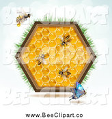 Vector Clip Art of a Bees, a Blue Butterfly and Honey Combs in a Hexagon with Grass by Merlinul
