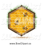 Vector Clip Art of a Bees on a Honey Comb by Merlinul