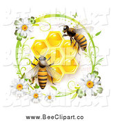Vector Clip Art of a Daisy Circle Around Honey Bees and Honeycombs by Merlinul