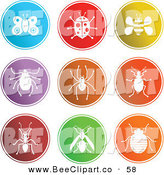 Vector Clip Art of a Digital Collage of 9 Round Colorful Insect Buttons by Prawny