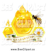 Vector Clip Art of a Honey Bee with a Daisy Guarantee Banner Drops and Honeycombs by Merlinul