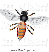 Vector Clip Art of a Honey Bee with a Shiny Body by Vectorace