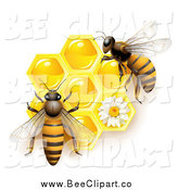 Vector Clip Art of Bees over Honeycombs by Merlinul