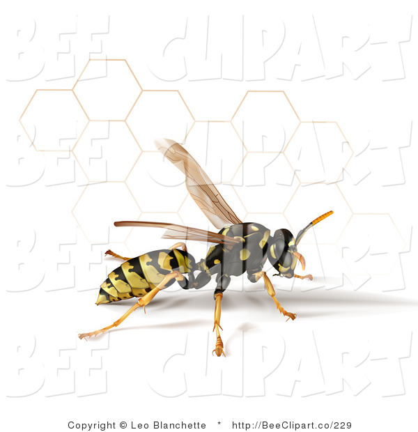 Clip Art of a 3d Yellow Jacket Wasp with a Honeycomb