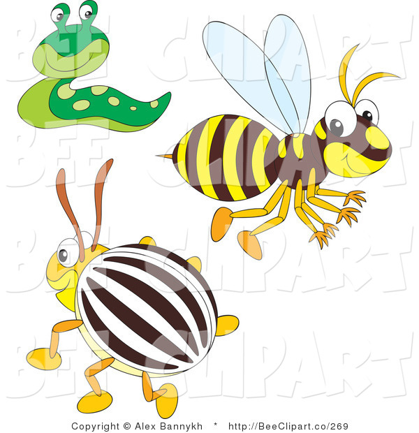 Vector Clip Art of a Bee Slug and Beetle