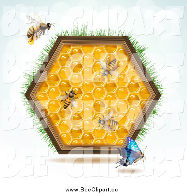 Vector Clip Art of a Bees, a Blue Butterfly and Honey Combs in a Hexagon with Grass
