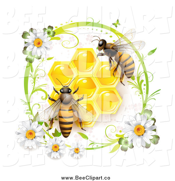 Vector Clip Art of a Daisy Circle Around Honey Bees and Honeycombs