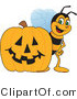 Clip Art of a Worker Bumble Bee Character Mascot by a Halloween Pumpkin by Toons4Biz
