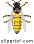 Vector Clip Art of a Shiny Bee by Vectorace